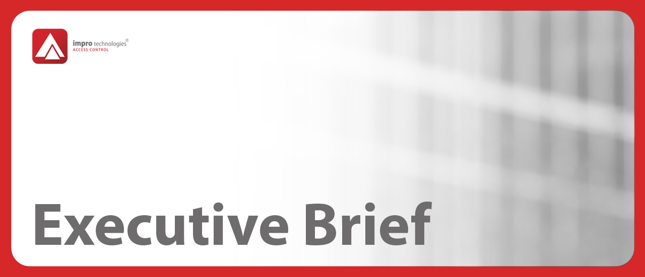 2020-executive-brief-header-for-website-page